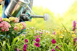 Affordable Landscaping Services across GU2 Region